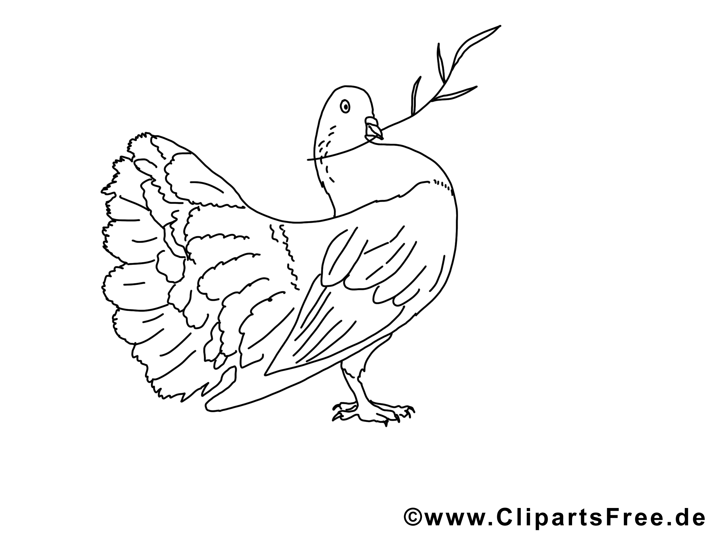 pigeon coloriage  pentecôte dessin  pentecôte dessin