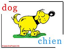 Dog - chien abc image Dictionnaire Anglais Français