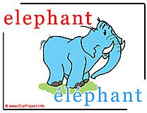 Elephant - éléphant abc image Dictionnaire Anglais Français