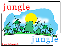 Jungle - jungle abc image dictionnaire anglais francais