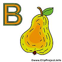 B birne illustration – Alphabet allemand images