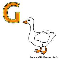 G gans dessin – Alphabet allemand à télécharger