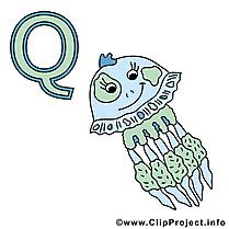 Q qualle dessin – Alphabet allemand cliparts à télécharger