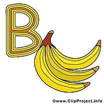 B banana illustration – Alphabet english images
