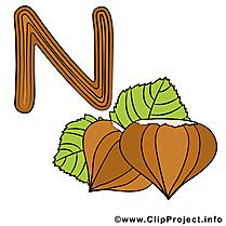 N nut images – Alphabet english dessins gratuits