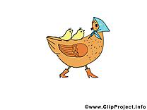 Poule illustration gratuite - Pâques clipart