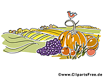 Champ légumes image gratuite – Automne illustration