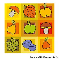 Champignons dessins gratuits – Automne clipart