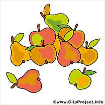 Fruits clip art gratuit – Automne images