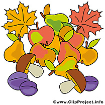 Fruits feuilles illustration – Automne images