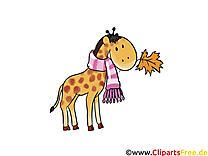 Girafe dessin à télécharger – Automne images