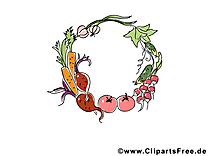 Légumes automne illustration à télécharger gratuite