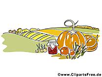 Légumes champ clip art – Automne  image gratuite