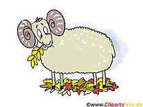 Mouton dessin – Automne clip arts gratuits
