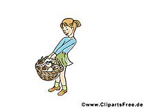 Panier champignons dessins gratuits – Automne clipart