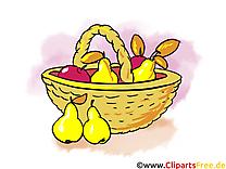 Panier fruits automne image à télécharger gratuite