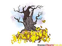 Sec arbre image gratuite – Automne illustration