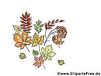 Sorbier feuilles dessin – Automne à télécharger