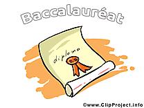 Certificat clipart – Baccalauréat dessins gratuits