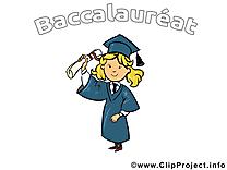 Dessin baccalauréat cliparts à télécharger