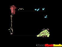 Nichoir illustration – Cadre images