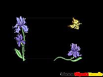 Papillon image – Cadre images cliparts