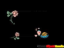 Roses paris image gratuite – Cadre illustration