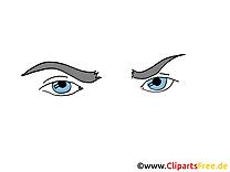 Bleus yeux image – Dessin cliparts à télécharger