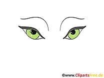 Verts yeux cliparts gratuis – Dessin images