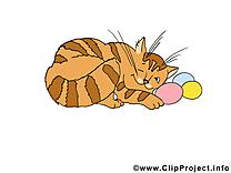 Chat clip art gratuit – Pâques images