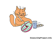 Chat images - Pâques dessins gratuits