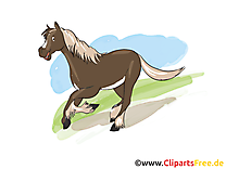 Animal clip art gratuit – Cheval dessin