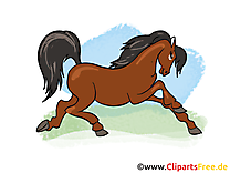 Animal images – Cheval clip art gratuit
