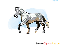 Cavale clip arts gratuits – Cheval illustrations