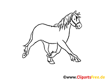 Coloriage illustration cheval images