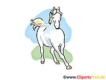Galope illustration gratuite – Cheval clipart