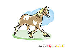 Illustration gratuite cheval clipart