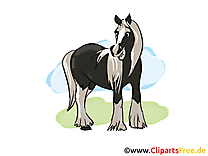 Image gratuite à télécharger cheval illustration