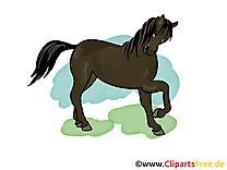 Images cheval dessins gratuits