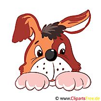 Ferme chien illustration à télécharger gratuite