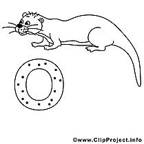Otter images – Alphabet allemand gratuit à imprimer