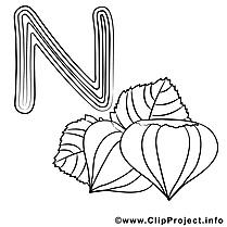 Nut clipart – Alphabet anglais dessins à colorier