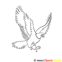Aigle clipart gratuit – Animal à colorier