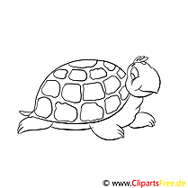 Coloriage tortue illustration à télécharger