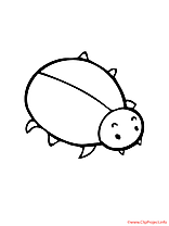 Insecte coloriage