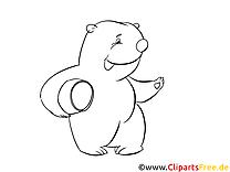 Miel ours dessin – Animal gratuits à imprimer