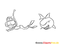 Requin clip art gratuit – Animal à imprimer