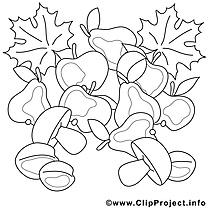 Champignons illustration – Automne à imprimer