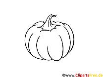 Citrouille dessin – Coloriage automne à télécharger
