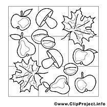 Coloriage feuilles automne illustration à télécharger